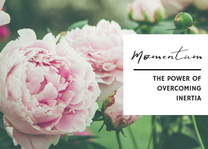 THE POWER OF OVERCOMING INERTIA