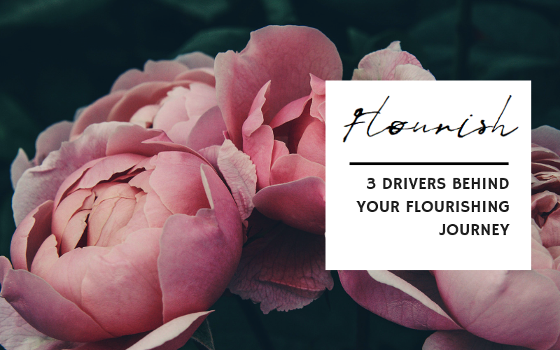3 Drivers Behind Your Flourishing Journey // What's behind flourishing despite the challenges that inevitably arise in life? There's plenty of strategies and resources to help you flourish in life but in this post, I would like to concentrate on an inwardly directed process.